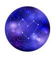 heart constellation vector image