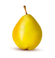 Rpe pear isolated on white vector image vector image