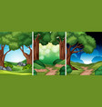 set of the forest vector image vector image