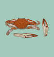 vintage crab drawing vector image vector image