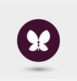 butterfly icon simple vector image