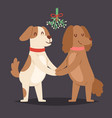 christmas dog love valentine day couple vector image
