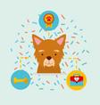dog animal domestic vector image vector image