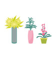 flowers and foliage leaves plants set vector image vector image