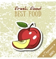Healthy Food Apple vector image vector image