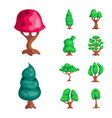 isolated object of tree and nature symbol set of vector image
