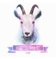 set watercolor cute goat vector image vector image