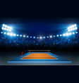 volleyball court arena field with bright stadium vector image vector image