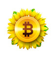 bitcoin flower concept of virtual money vector image