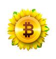 bitcoin flower concept of virtual money vector image vector image