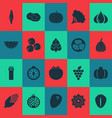 fruit icons set with coconut kiwano pumpkin and vector image