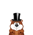 Postcard to Groundhog DayMarmot on a white vector image vector image
