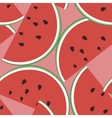 seamless of watermelon on a vector image