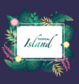 template tropical island with tropical leafs vector image