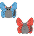 chinchilla with butterfly wings vector image vector image