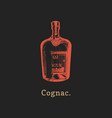 cognac bottle hand drawn vector image vector image