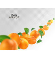 creative concept with flying apricots and leaves vector image
