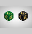 euro green and black euro cube vector image
