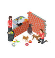 stray animals problem dogs cats care vector image vector image