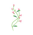 cartoon abstract pink flower icon vector image vector image