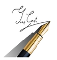 fragment of fountain pen vector image vector image