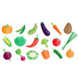 fresh vegetables big set healthy vegetarian vector image