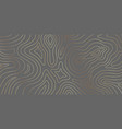 luxury gold abstract topographic map texture vector image vector image