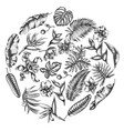 round floral design with black and white monstera vector image vector image