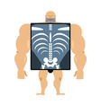 X-ray of person Structure of men Construct of vector image vector image