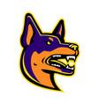 australian kelpie dog mascot vector image vector image