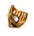 baseball glove with ball from a splash vector image