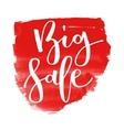 Big sale hand written inscription vector image vector image