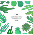hand drawn wild cacti vector image vector image