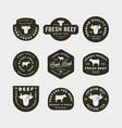 set premium fresh beef labels vector image