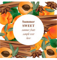 summer appricot and cinnamon background pattern vector image vector image
