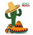 viva mexico celebration party poster vector image