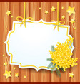background with mimosa and label vector image