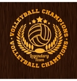 Gold volleyball emblem on the wooden texture vector image vector image