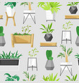 home plants and house pot tropical cacti vector image vector image