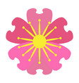 isolated colored flower vector image vector image