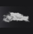 realistic transparent cloud fog or smoke cloud vector image