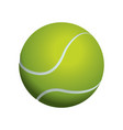 tennis ball isolated vector image vector image