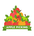 apple picking logo natural products farm market vector image vector image