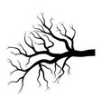 bare branch winter design isolated on white vector image vector image