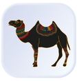 Camel Egypt color vector image vector image