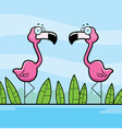 flamingos water vector image vector image