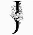 hand drawn floral j monogram and logo vector image