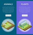 natural farming isometric vertical flyers vector image vector image