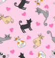 Seamless pattern with love cats vector image vector image