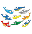 Collection of fish vector image